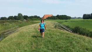 Wandelingen in Friesland